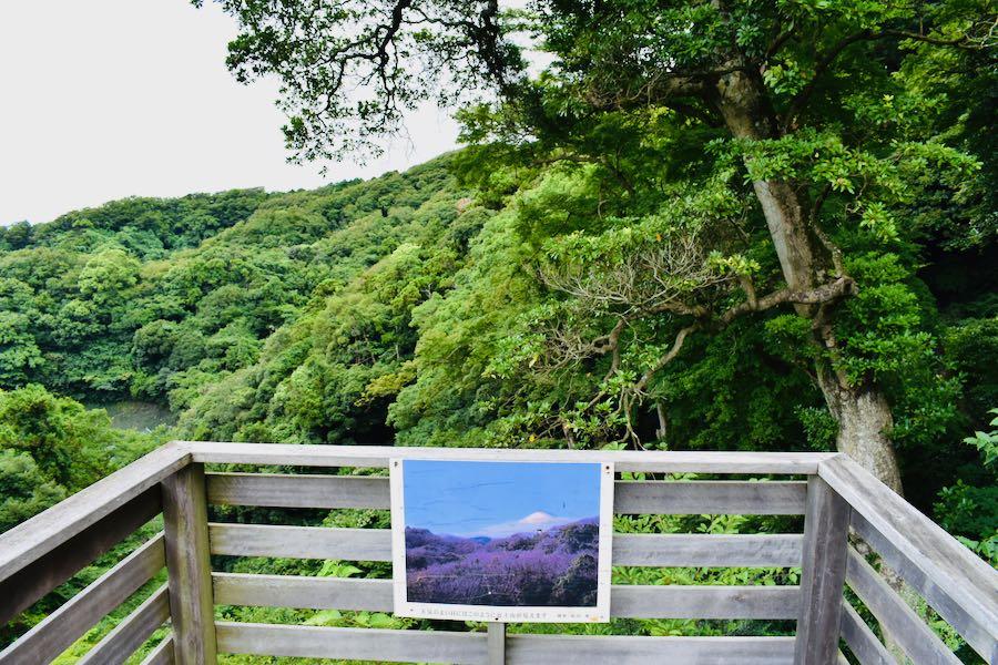 "Cosa vedere a Kamakura: Panorama ""vista"" Monte Fuji"