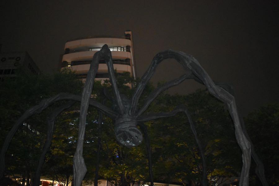 Cosa vedere a Tokyo Giappone: Ragno Maman