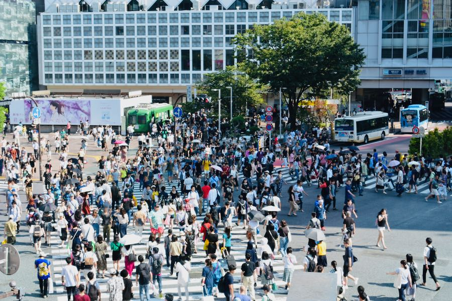Cosa vedere a Tokyo Giappone: Shibuya Crossing