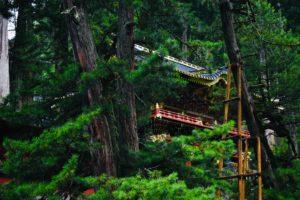 Area Dei Templi E Dei Santuari   Cosa fare e vedere a Nikko