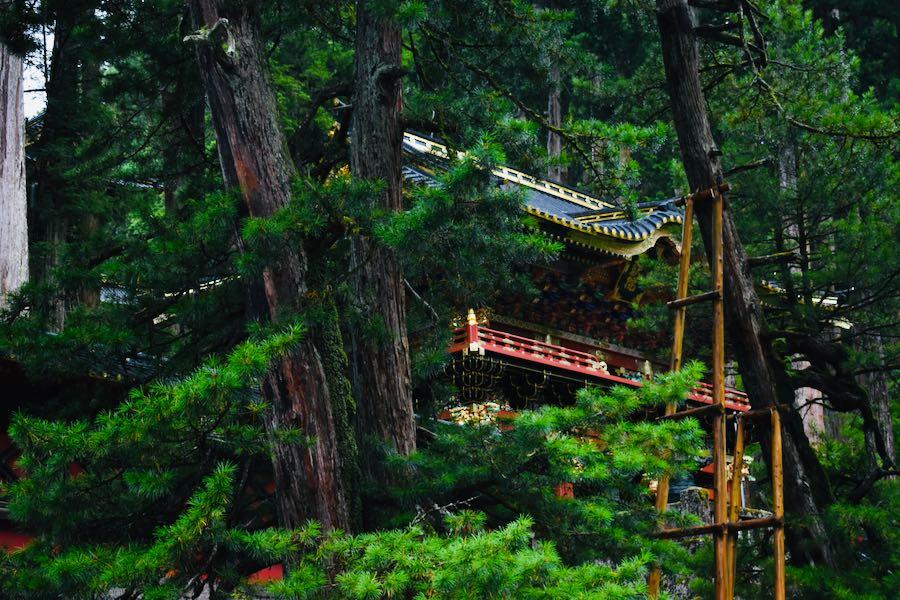 Cosa vedere a Nikko: Around Nikko