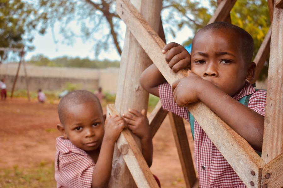 Zanzibar cosa vedere: Asilo Kidoti