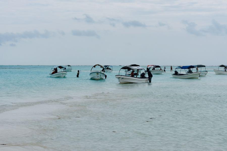 Cosa vedere a Zanzibar: Mnemba