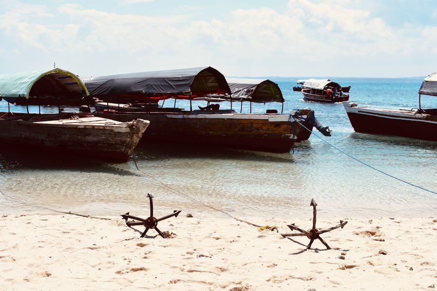 Cosa vedere a Zanzibar: Prison Island