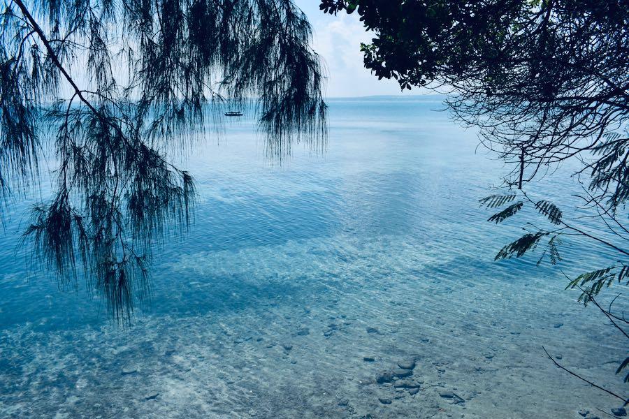 Zanzibar escursioni: Prison Island