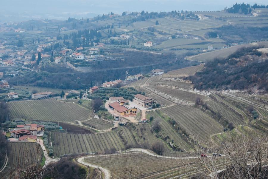 Cosa vedere a Verona e dintorni: Vista della Valpolicella