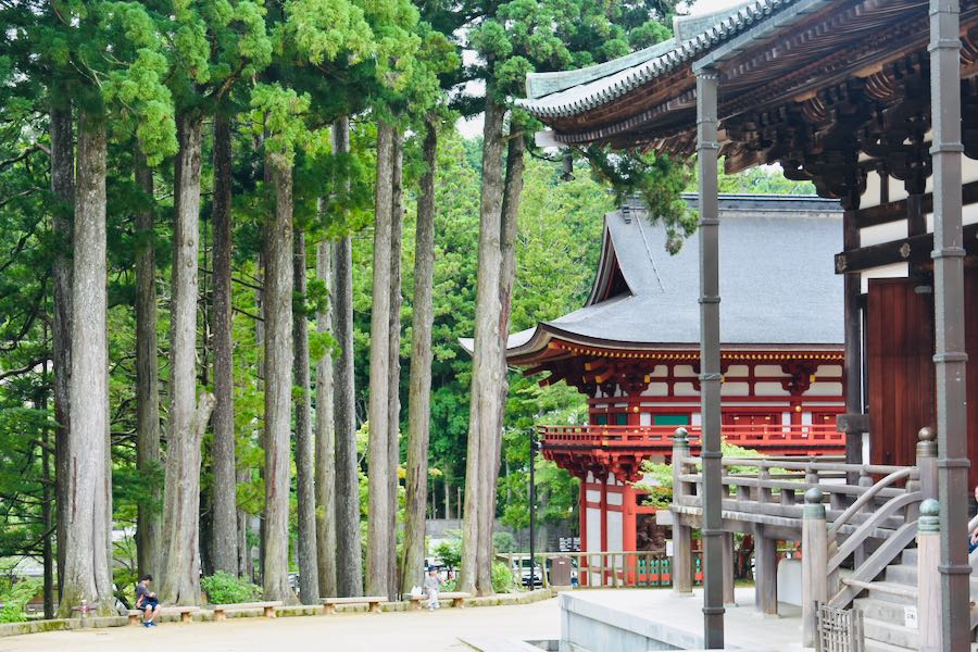 Koyasan Giappone: Danjo-Garan