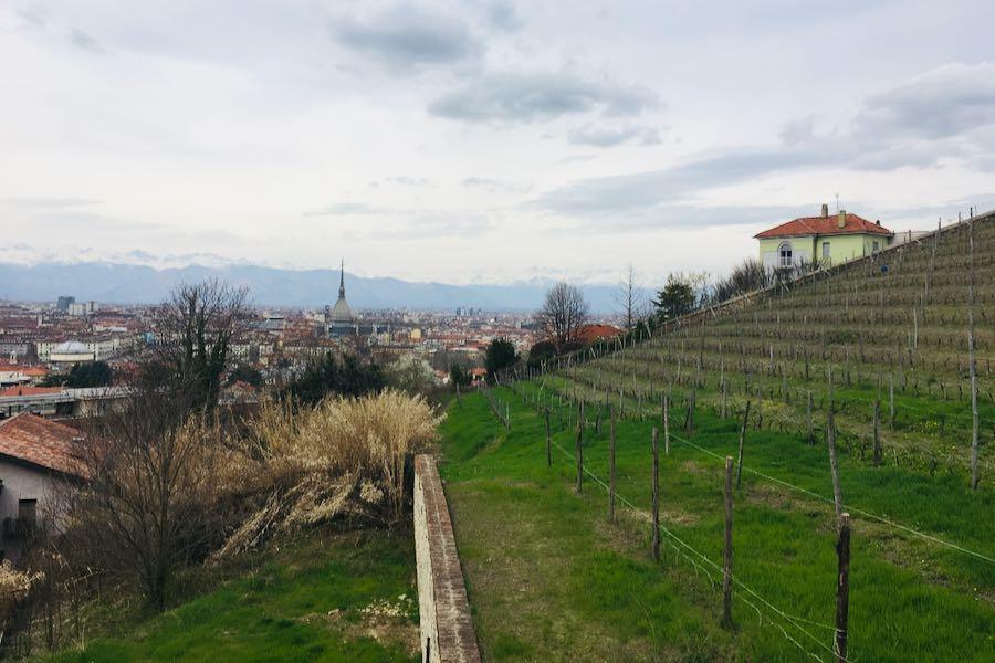Gita fuori porta Piemonte | Villa della Regina