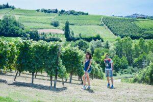 Vigne - Coazzolo   Langhe e Monferrato