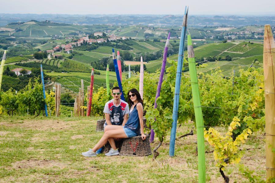 Langhe e Monferrato: Vigna dei Pastelli Coazzolo