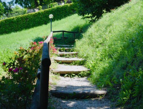 Strada - Neive | Strada Romantica Langhe e Roero